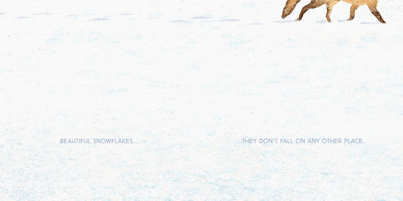 http://www.bartaking.com/files/gimgs/th-66_Beautiful-Snowflakes_Web.jpg